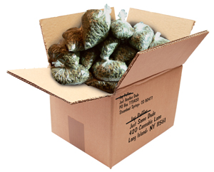 """""""The ad said 'We Ship Anything!' The key word is 'Anything.' Then I get arrested? That's false advertising, bro,"""" says Steamboat's Jay Puffer, who was arrested for shipping $500,000 worth of marijuana to himself."""