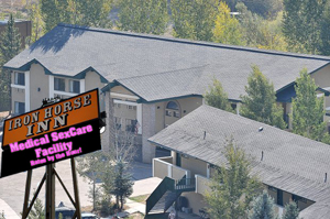 """Steamboat Springs City Council is considering novel ways to turn the debt-laden Iron Horse Inn into a profitable venture. An artist's rendering shows the proposed """"Medical SexCare Facility"""" envisioned by some council members."""